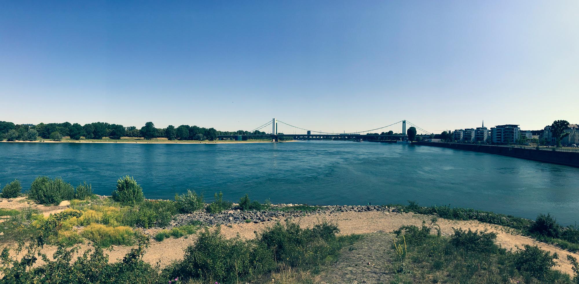 Rhein